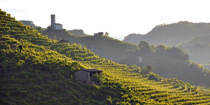 Veneto Colline Prosecco