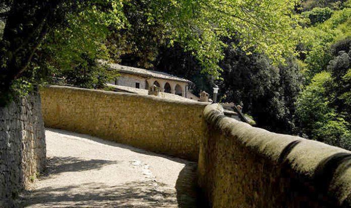 Assisi bosco di lecci