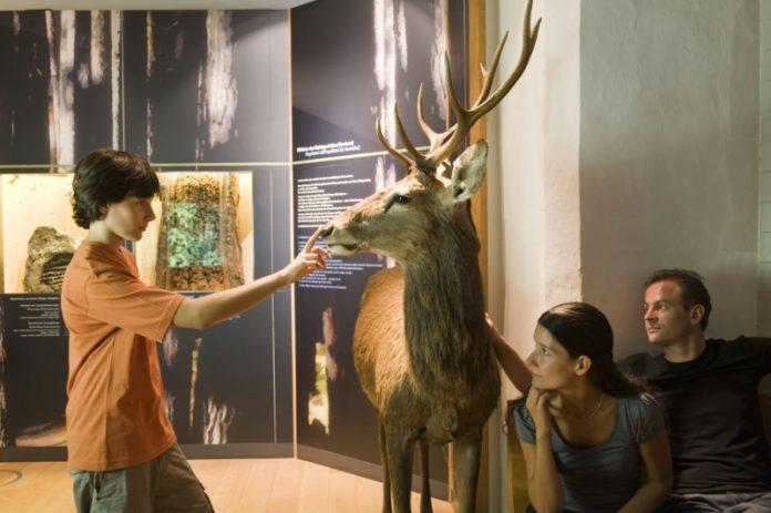Bolzano Museo Scienze Naturali