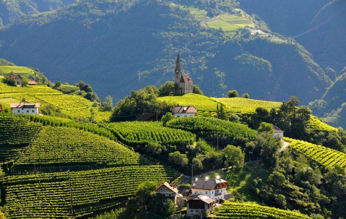 Bolzano Vigneti