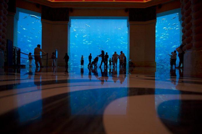 Dubai Lost Chambers