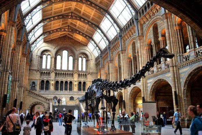 Londra Museo di Storia Naturale