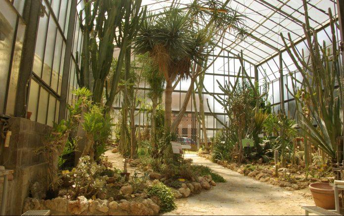 Siena Orto Botanico