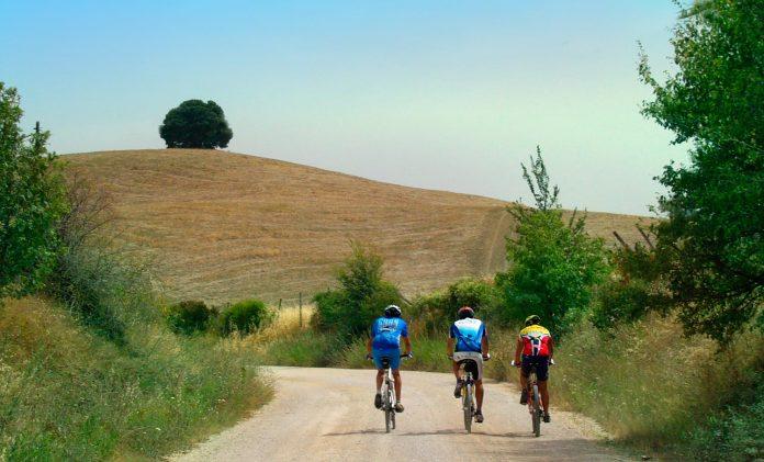 Siena in bici campagna