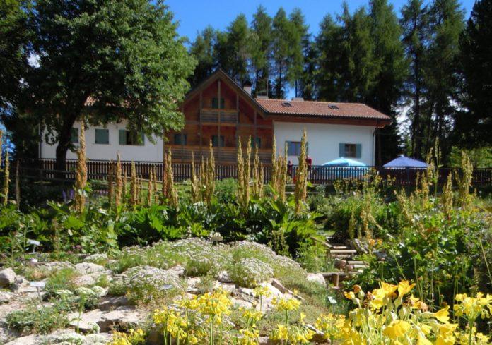 Trento Giardino Botanico Alpino